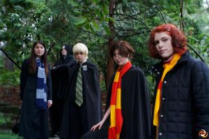 Hogwartians by kolibri-chan