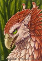 Red Feathers Green Eyes by Shadow-Wolf