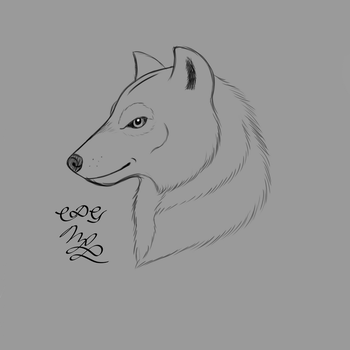 Wolf Head Doodle by Cookiedough-Gecko
