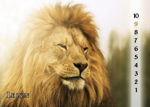 09 - The lion by Varagh
