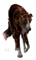 Art Trade:  Brindle Borzoi by ammy-o