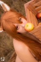Spice and Wolf Holo Photoset Image 2 by Feywilde