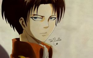 Levi by TaeBalla05