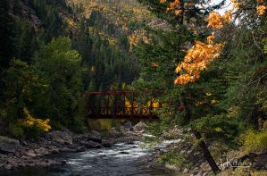Jewel Tones of Autumn  by TRunna