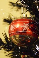 Baubles by KayleighBPhotography