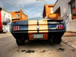 GT350 by shahyarg