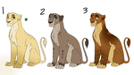 Lioness Adopts - OPEN by SpaceSharkz