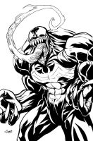 Venom digital inks by DRPR