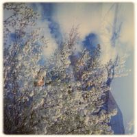 Cloudbuster by JillAuville