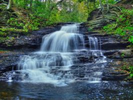 Ricketts Glen State Park 10 by Dracoart-Stock