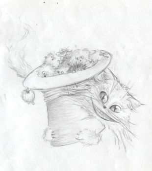 A hat full of.... by Elveanna