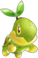 Turtwig by Tussi1