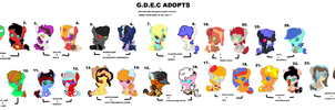 G.D.E.C adopts by Goldenecho