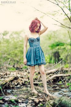 Denim by SusanCoffey