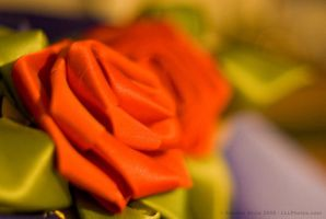 Silk Roses by aheria
