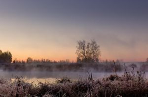 Cold And Misty Morning by DeingeL