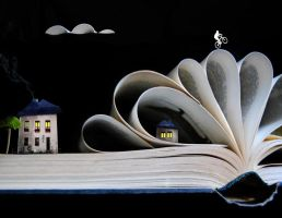 In the book by Fidje