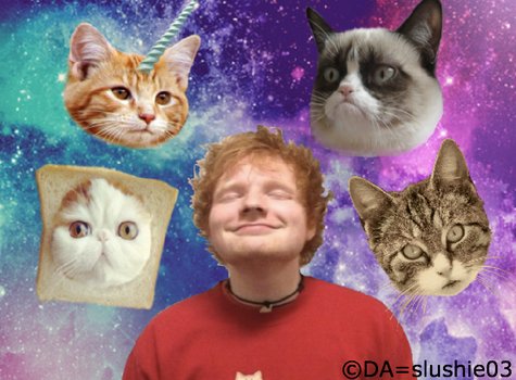 Ed Sheeran in space w/cats by slushie03