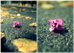 flower in the road by skipper81