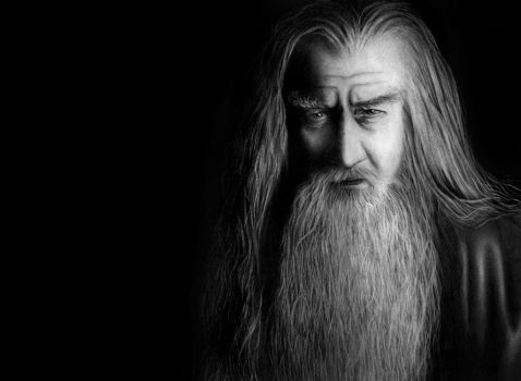 Gandalf the Grey by little-spacey