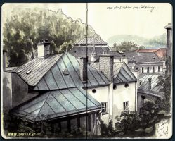 roofs of salzburg by Iraville