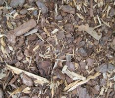 Mulch Texture 2-small by ErrantDreams