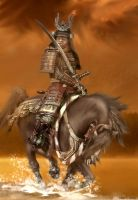 Samurai ~ The Way of the Warrior II by zulumike
