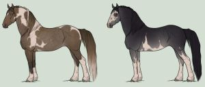 Designs for Siorlasair by TamarackPark
