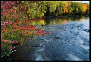 Evening at Oxtongue River by IgorLaptev