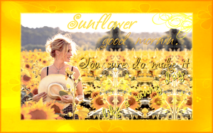Sunflowers by firefly-flower-power