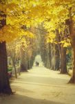 an autumn stroll by ivadesign