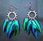 Steamy Beetle Earrings 1 by TerraWolffe