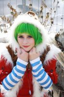Gumi (Winter) by fotoboerb