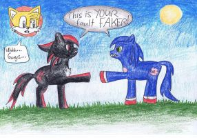 sonic and shadow: the pony ray accident by EstorianTheCat