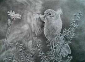 Bird Charcoal A4 By Helsartpage by Helsartpage
