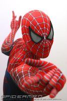 SPIDERMAN SUIT by barthezjame