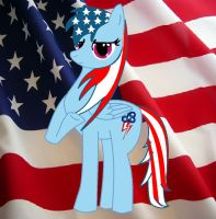 Happy 4th of July by aquaheartthecat