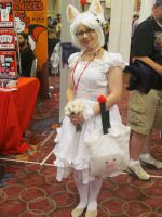 A-Kon '14 - Misc 7 by TexConChaser