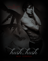 Hush, Hush Mock Cover by Ardawling