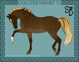 Stoltzer Import 35 by ThatDenver