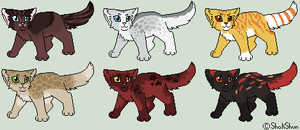 Domestic Cat Adopt/Breed [open] by NebulousDrift