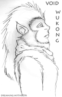 Void Wukong by dreaming-myth