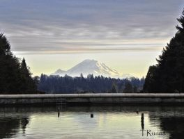 Mt. Rainier from the U Dub Campus by TRunna