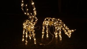 Lighted Deer by Ox3ArtStock