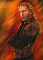 Anders 7 by WildBara