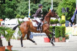 3DE Show Jumping Phase Stock 21 by LuDa-Stock