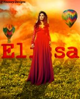 Elissa 2012 by yousssry