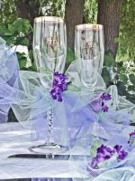 Bride and Groom Glasses by misbeavin