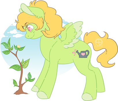 Sweet Sprout - DTA Contest by Thomisus