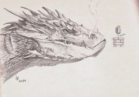 Smaug and coins by leandroh00